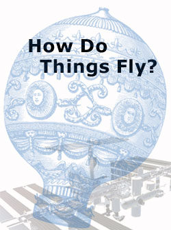 How Do Things Fly?